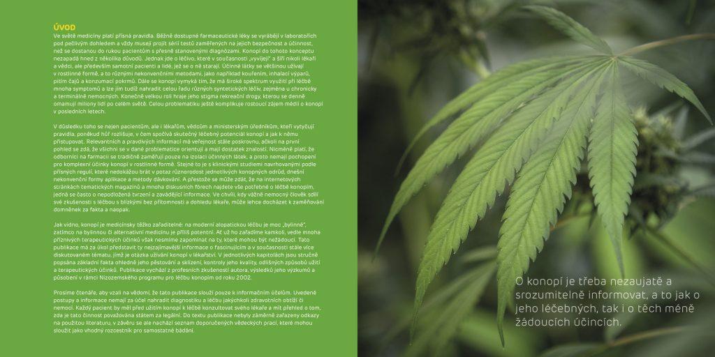 CZECH Bedrocan Medicinale Cannabis
